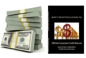 business credit, aged corporations with credit, aged corporations for sale, shelf corporations